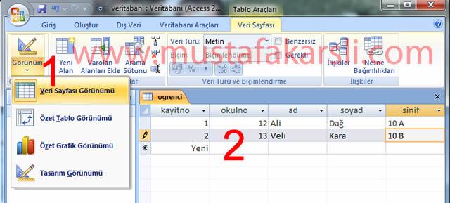 Access Tabloya Kayıt Ekleme