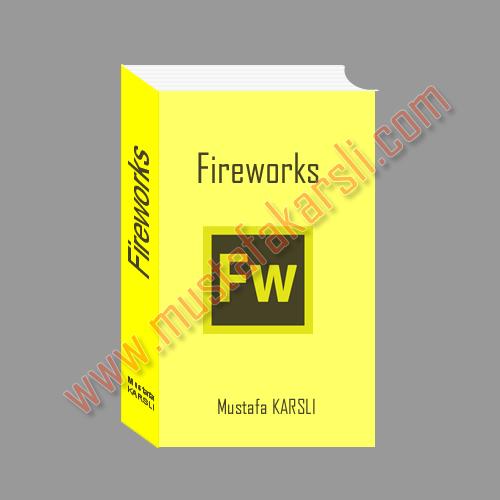 Fireworks kitap örneği vektör araçaları