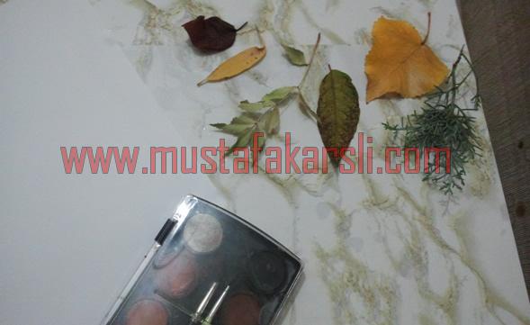 Yaprak baskısı malzemeleri