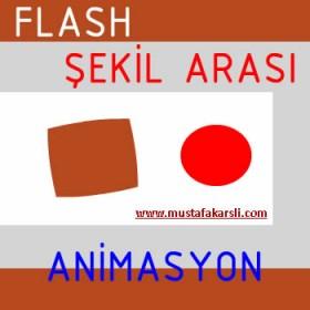 Şekil Arası Animasyon Yapımı (Hafta 5)