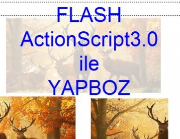 Flash Action Script 3 ile YapBoz Yap�m�